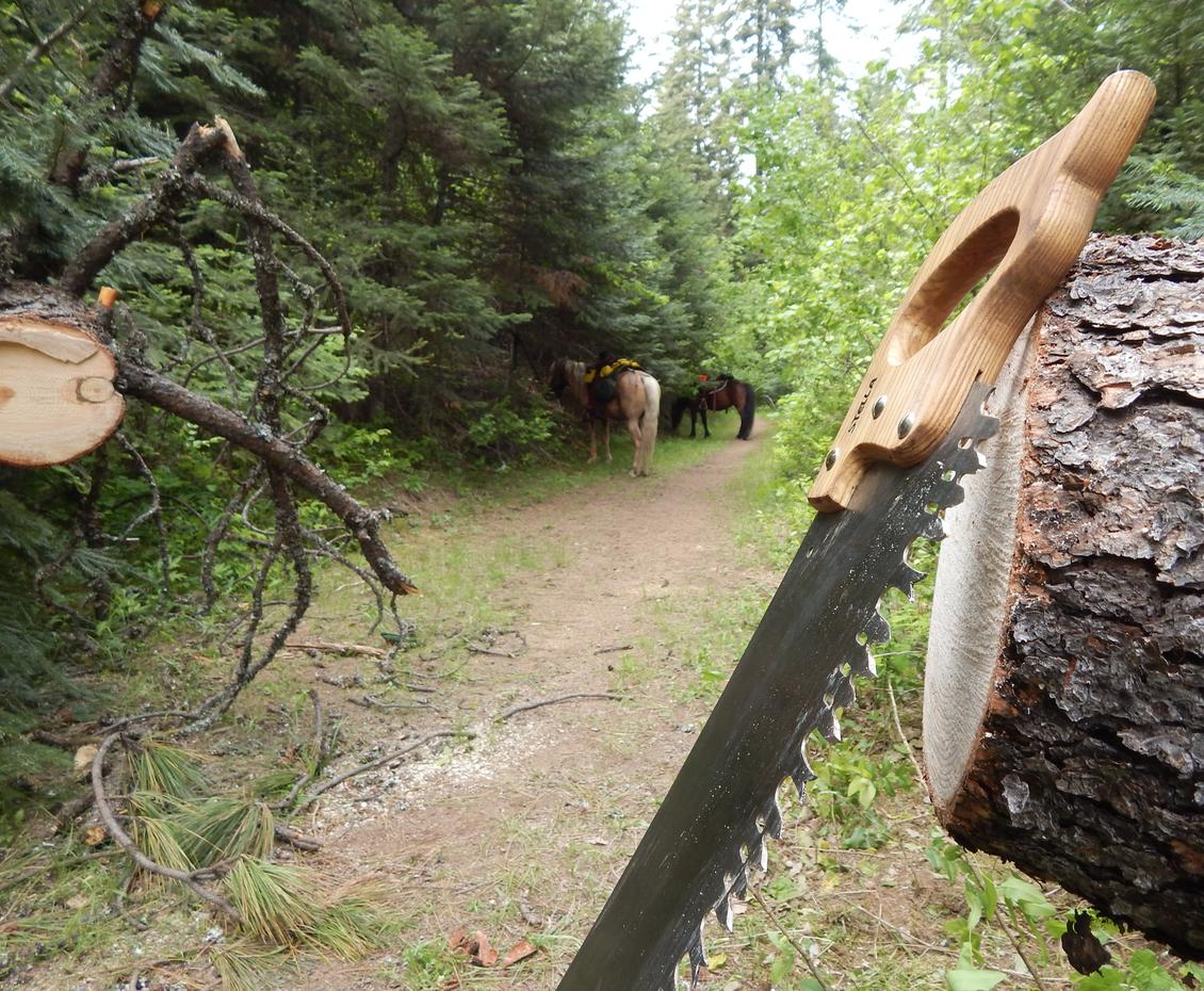 trail-maintenance.png
