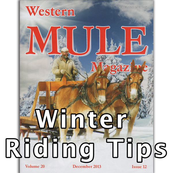 winter-riding-tips.jpg
