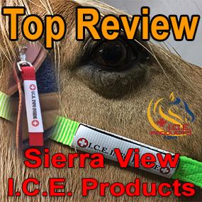 sierraview.jpg