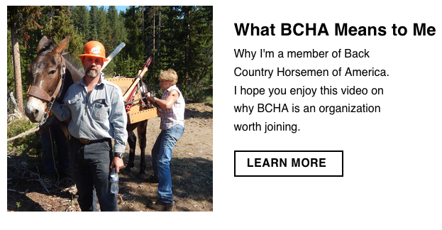 What BCHA Means to Me