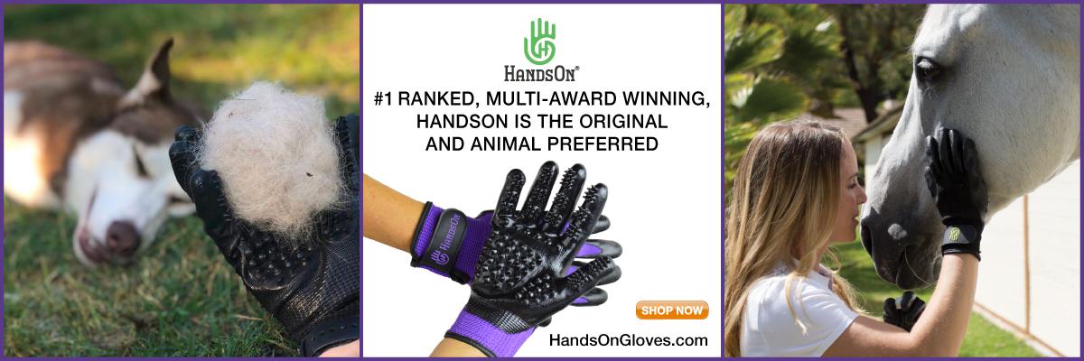 handson-gloves_webbanner-1200x400-2.jpg